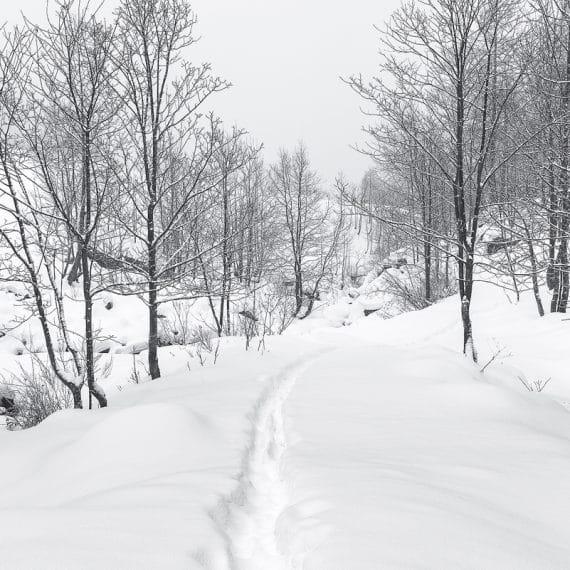 Marco Manzini - Snow Path